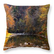 Fall Color Elk River Throw Pillow