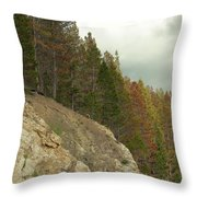 Fall Color Evergreens Throw Pillow