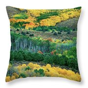 Fall Color In The Eastern Sierras California Throw Pillow