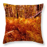 Fall Color In The Woods Throw Pillow