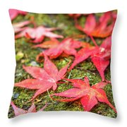 Fall Color Maple Leaves At The Forest In Nikko, Tochigi, Japan Throw Pillow