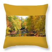 Fall Color On Creek  5597 Throw Pillow