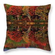 Fall Color Reflected In Thornton Lake Michigan Throw Pillow