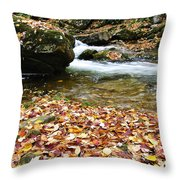 Fall Color Rushing Stream Throw Pillow