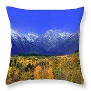 Fall Colored Aspens Grand Tetons Np Throw Pillow