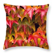Fall Colored Ivy Throw Pillow