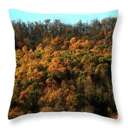 Fall Colors 16 Throw Pillow