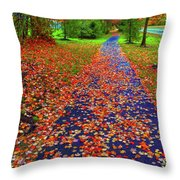 Fall Colors 2014-#15 Throw Pillow