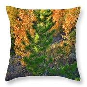 Fall Colors Along Dillon Reservoir Throw Pillow