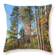 Fall Colors Along The Norway Beach Loop Throw Pillow
