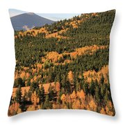 Fall Colors At Rocky Mountain National Park Throw Pillow