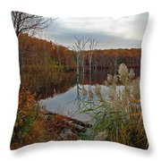 Fall Colors At The Reservoir Throw Pillow