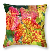 Fall Colors At The Vineyard Throw Pillow