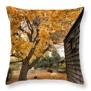 Fall Colors Throw Pillow