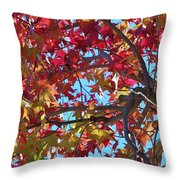 Fall Colors I Throw Pillow