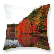 Fall Colors In Madbury Nh Throw Pillow