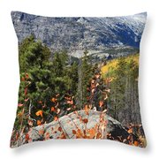 Fall Colors In Rocky Mountain National Park Throw Pillow