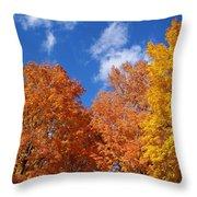 Fall Colors In Spokane Throw Pillow