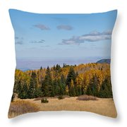Fall Colors In The Inner Basin Throw Pillow