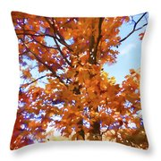 Fall Colors Looking Awesome Throw Pillow