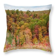 Fall Colors On Hillside Throw Pillow