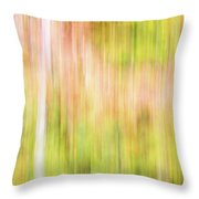 Fall Colours Abstract, Oxtongue River, Algonquin Highlands Throw Pillow