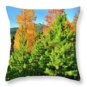 Fall Comes To Dillon Colorado Throw Pillow