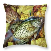 Fall Crappie Throw Pillow