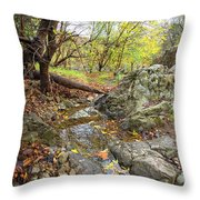 Fall Creek View Throw Pillow