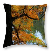 Fall Day At The Lake Throw Pillow