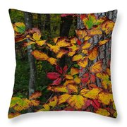 Fall Decorating Throw Pillow