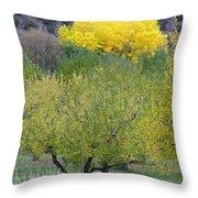 Bright Yellow Leaves, Dixon New Mexico Throw Pillow