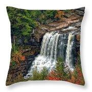 Fall Falls 2 Throw Pillow