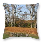 Fall Fence Throw Pillow