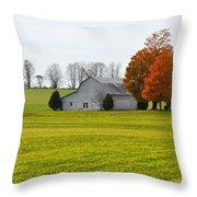 Fall Field Throw Pillow