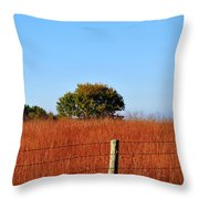 Fall Field Throw Pillow