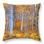 Fall Fiesta Throw Pillow