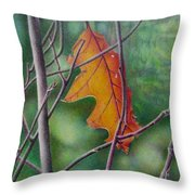Fall Finale Throw Pillow