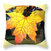 Fall Finery 2 Throw Pillow