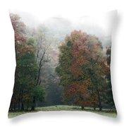 Fall Fog Throw Pillow