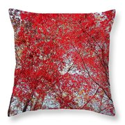 Fall Foilage Throw Pillow