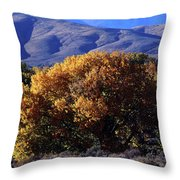 Fall Foliage And Hills, Carson City Throw Pillow