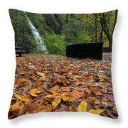 Fall Foliage At Horsetail Falls Throw Pillow