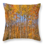 Fall Foliage Color Vertical Image Throw Pillow