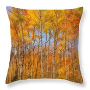 Fall Foliage Color Vertical Image Orton Throw Pillow
