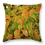 Fall Foliage II Throw Pillow