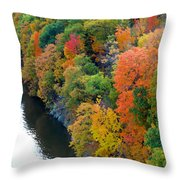 Fall Foliage In Hudson River 1 Throw Pillow
