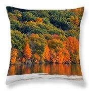 Fall Foliage In Hudson River 14 Throw Pillow