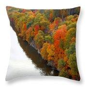Fall Foliage In Hudson River 6 Throw Pillow