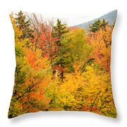 Fall Foliage In The Mountains Throw Pillow